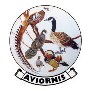Aviornis International