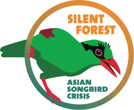 Silent Forest Campaign